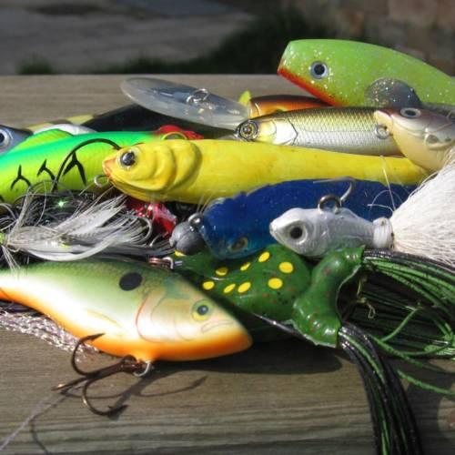 Tout le monde<br>à la pêche