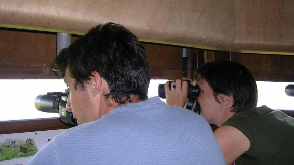 Touristes observant les oiseaux dans un observatoire - marais poitevin
