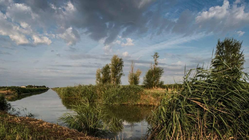 le marais desseche, paysage marais poitevin