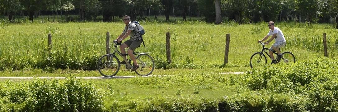 Le site ignrando.fr, idéal pour se balader à vélo dans le Marais poitevin
