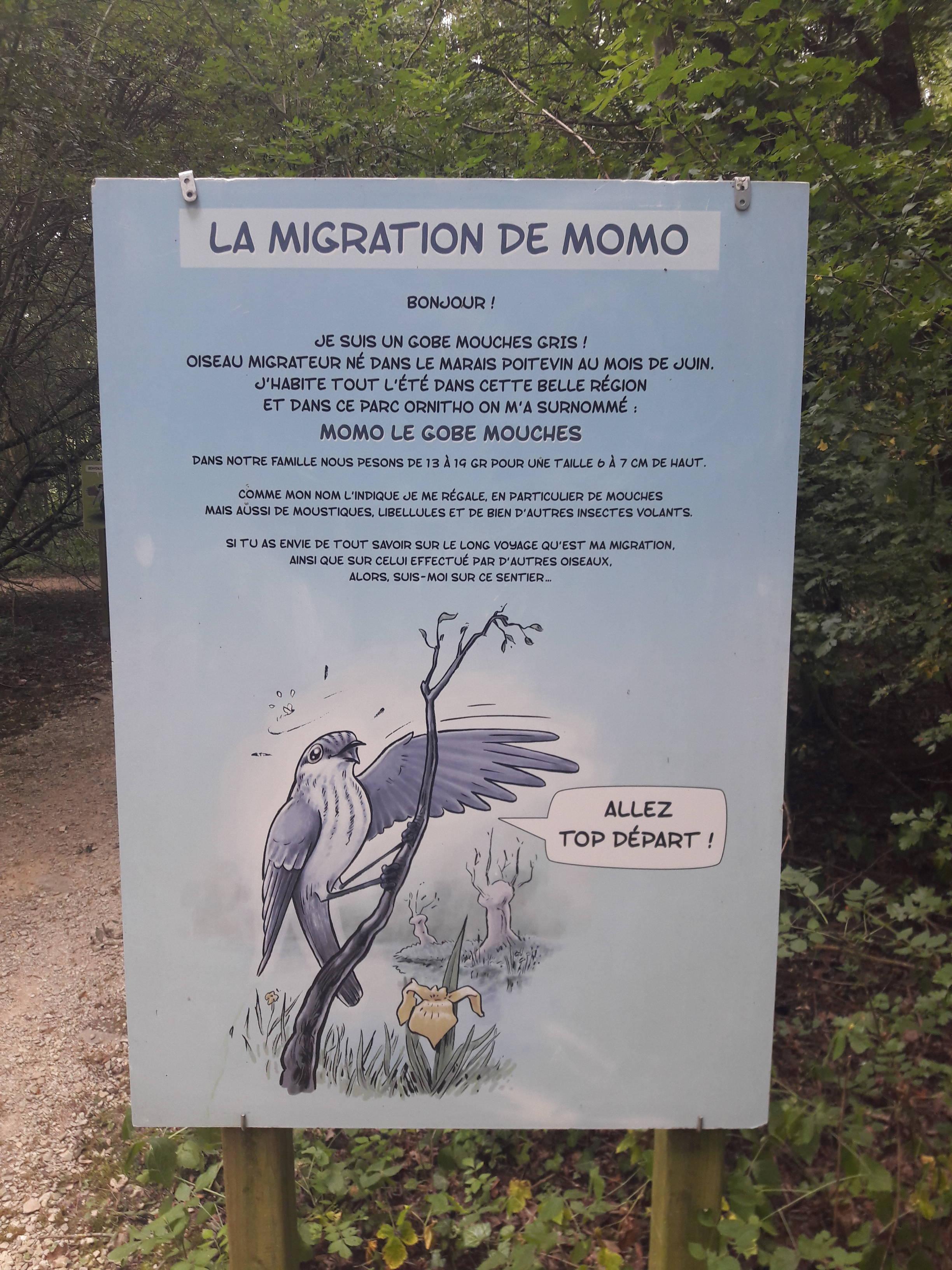 jeu de pistes pour les enfants au parc ornithologique les oiseaux du marais poitevin à saint hilaire la palud dans le parc naturel régional du marais poitevin