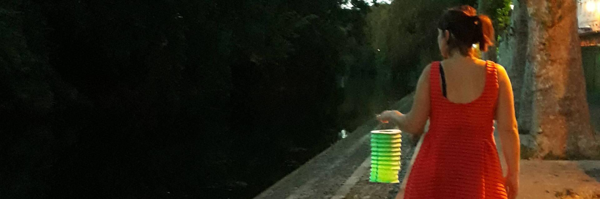 Balade à Niort à la lumière des lampions
