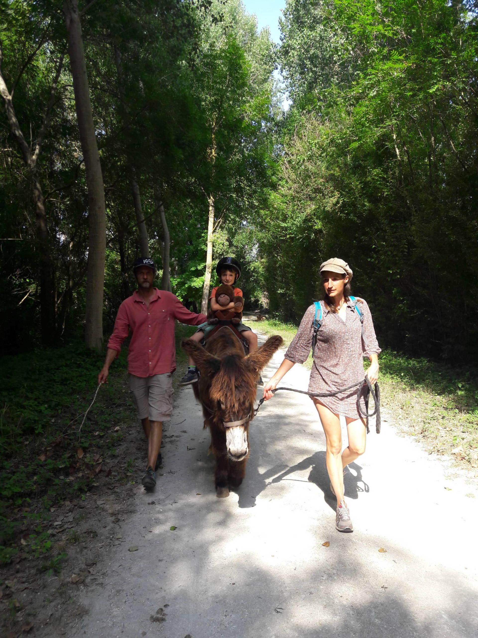 Famille faisant une randonnée en âne bâté dans le Parc naturel régional du Marais poitevin