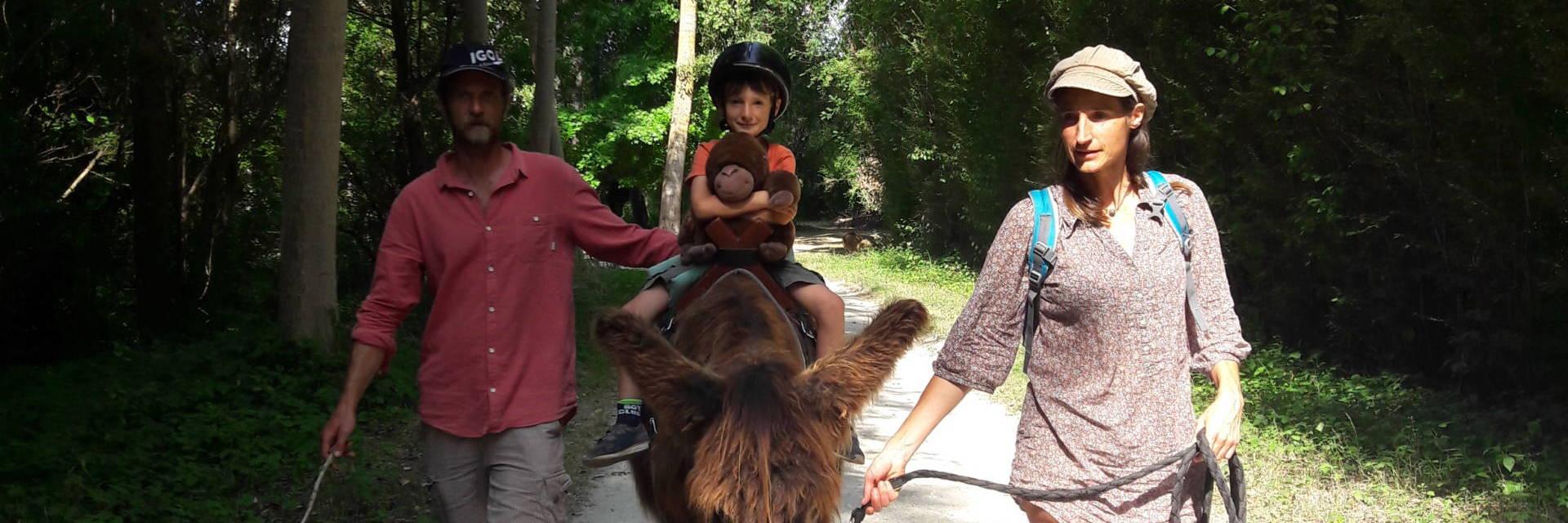 Explorer le Marais poitevin avec les enfants