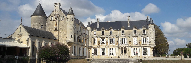 The Castle of Terre-Neuve in Fontenay-le-Comte