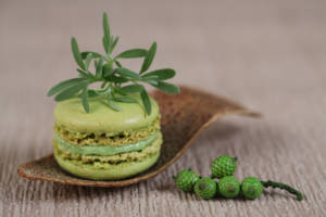 Macaroons with angelica (Fotolia - Guy)