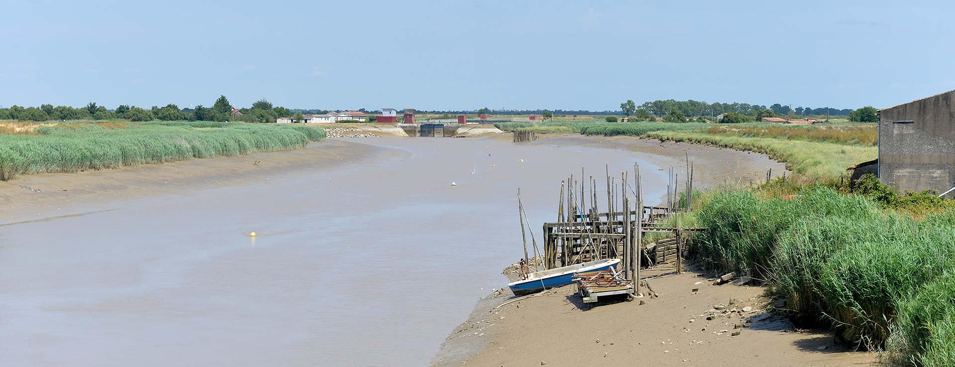 Les bords de la Sèvre niortaise près de Marans marais poitevin