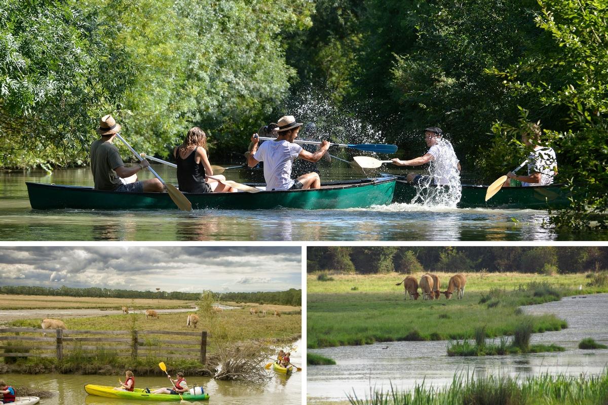Canoe au Marais poitevin