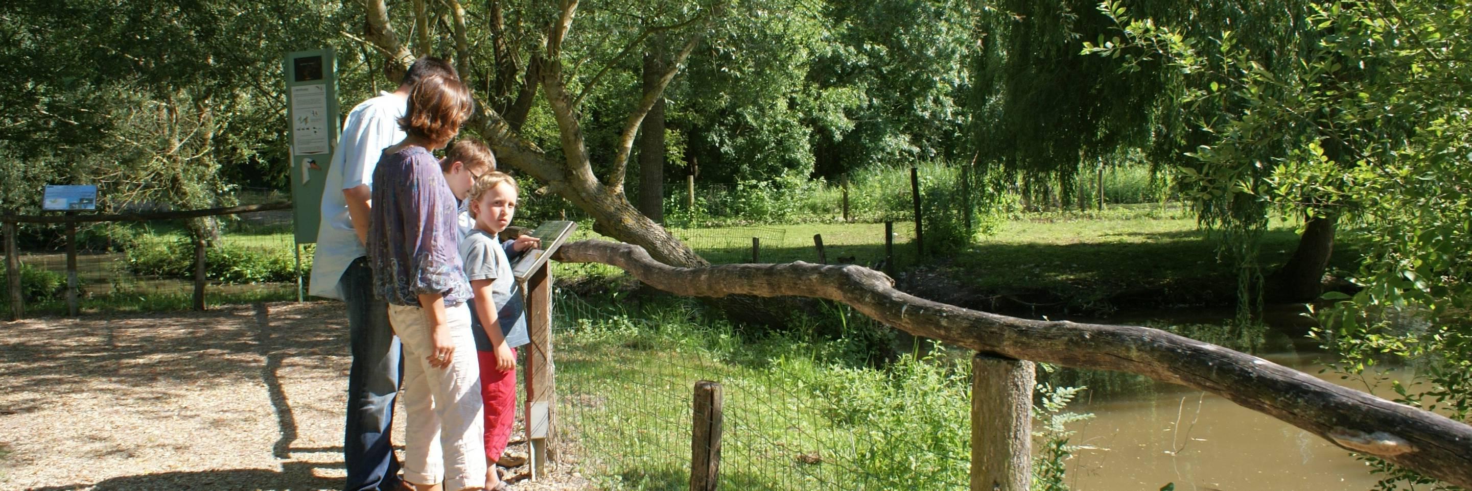 Le Parc ornithologique du Marais poitevin