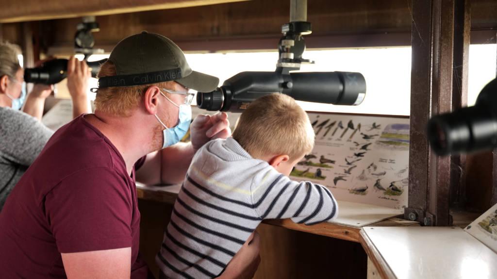 Un papa et son garçon en pleine séance d'observation des oiseaux.