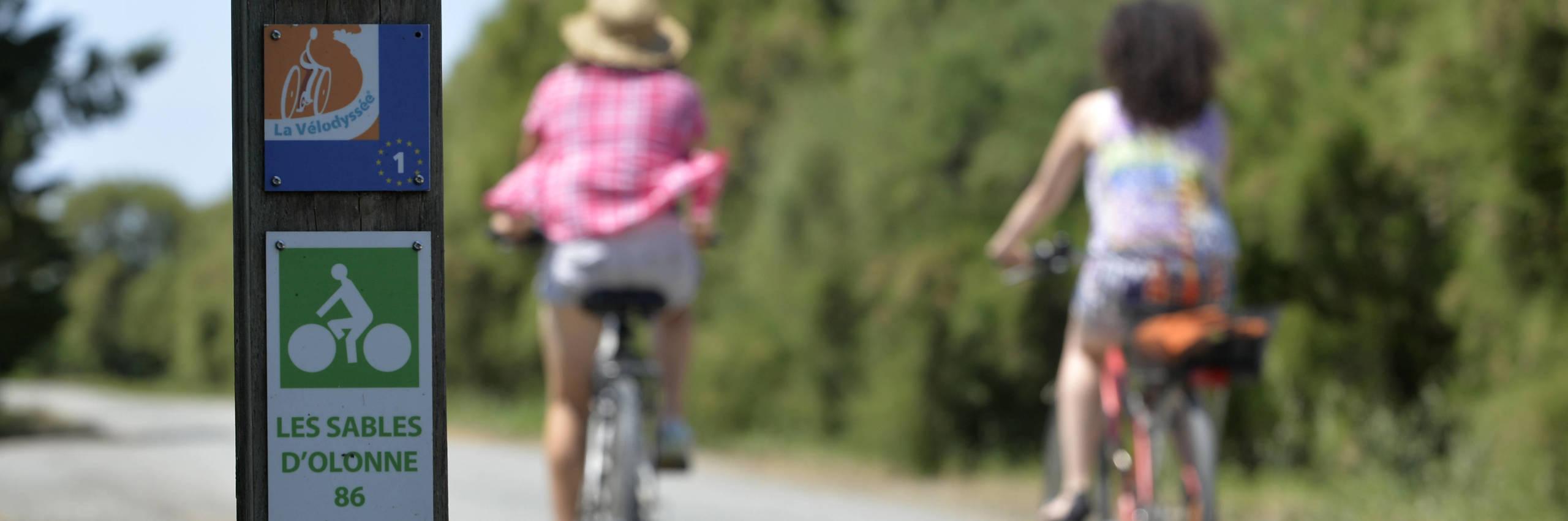 La Vélodyssée, le Marais poitevin en roue libre