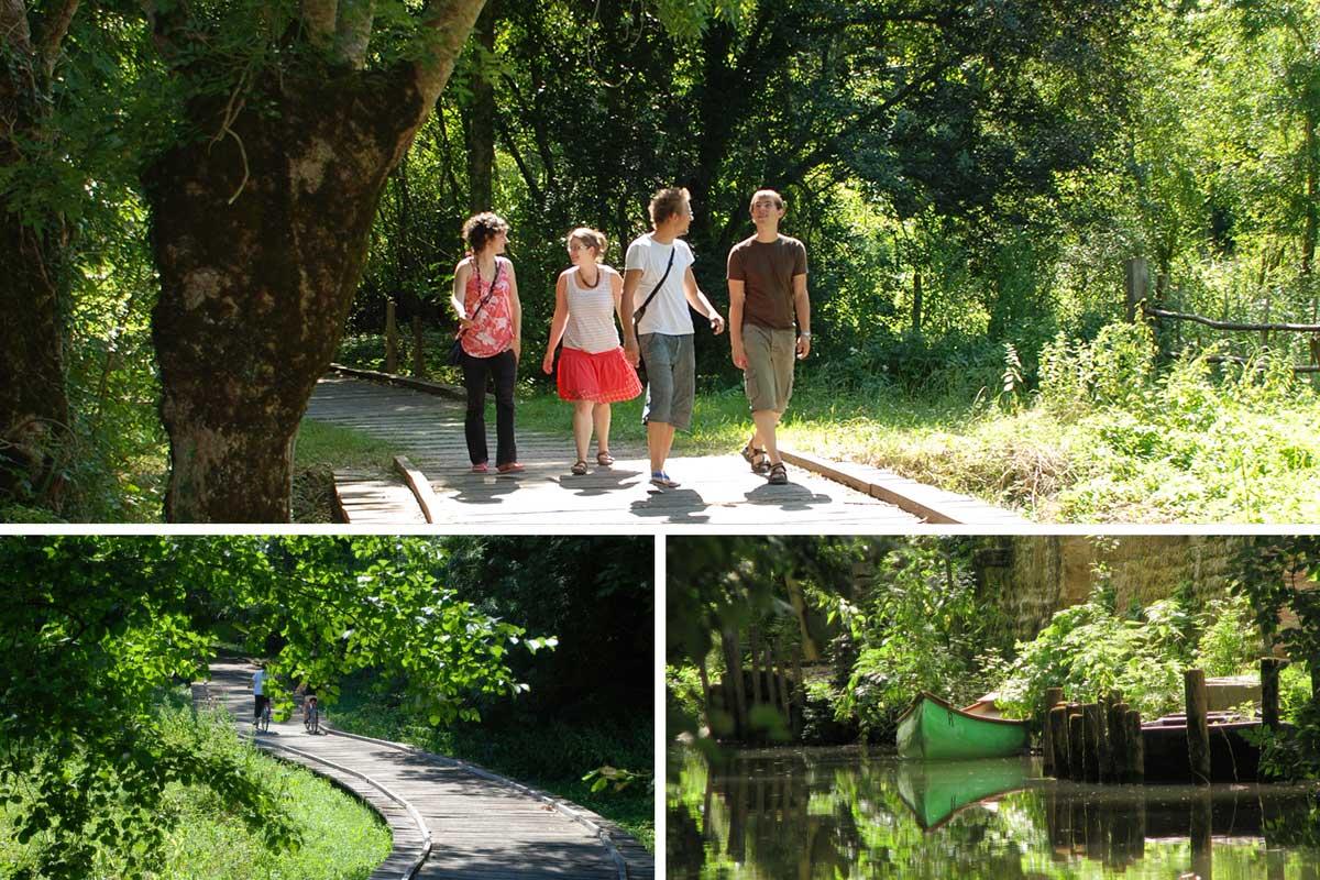 Escapade nature sans voiture dans le Marais poitevin