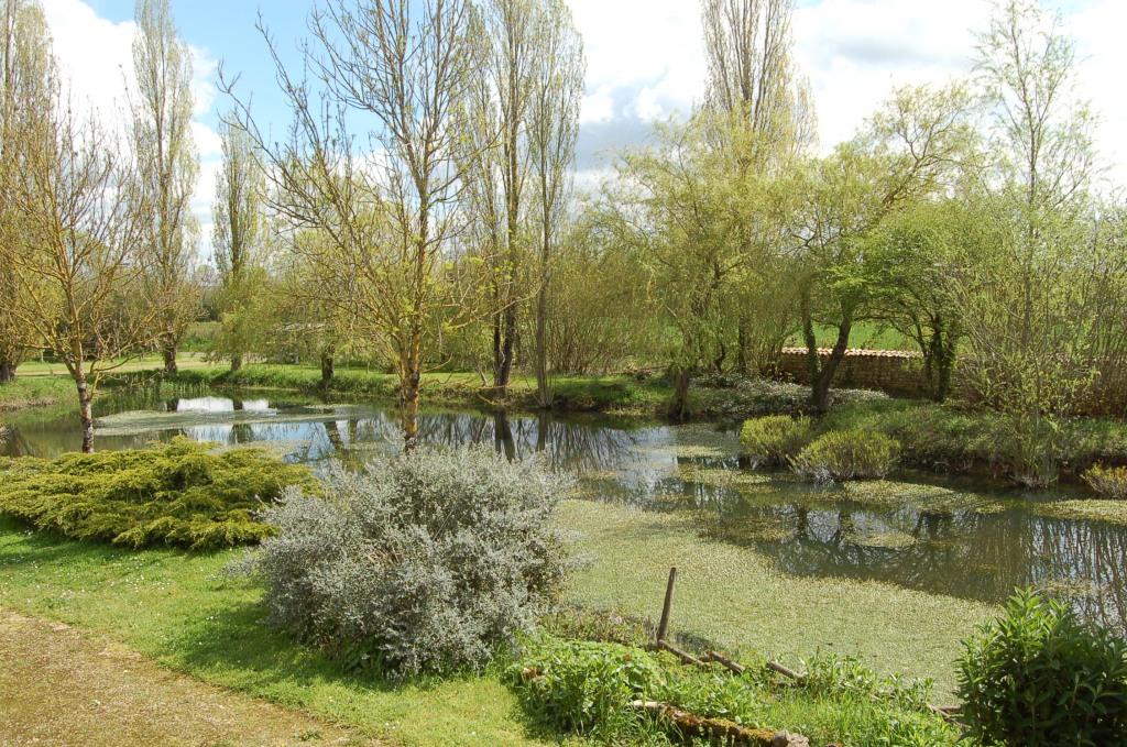 La Mare naturelle du gîte de Sainte Mégrine à Coulon dans le Parc naturel régional du Marais poitevin
