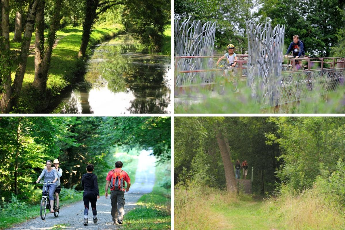 Les sentiers dans le Marais poitevin