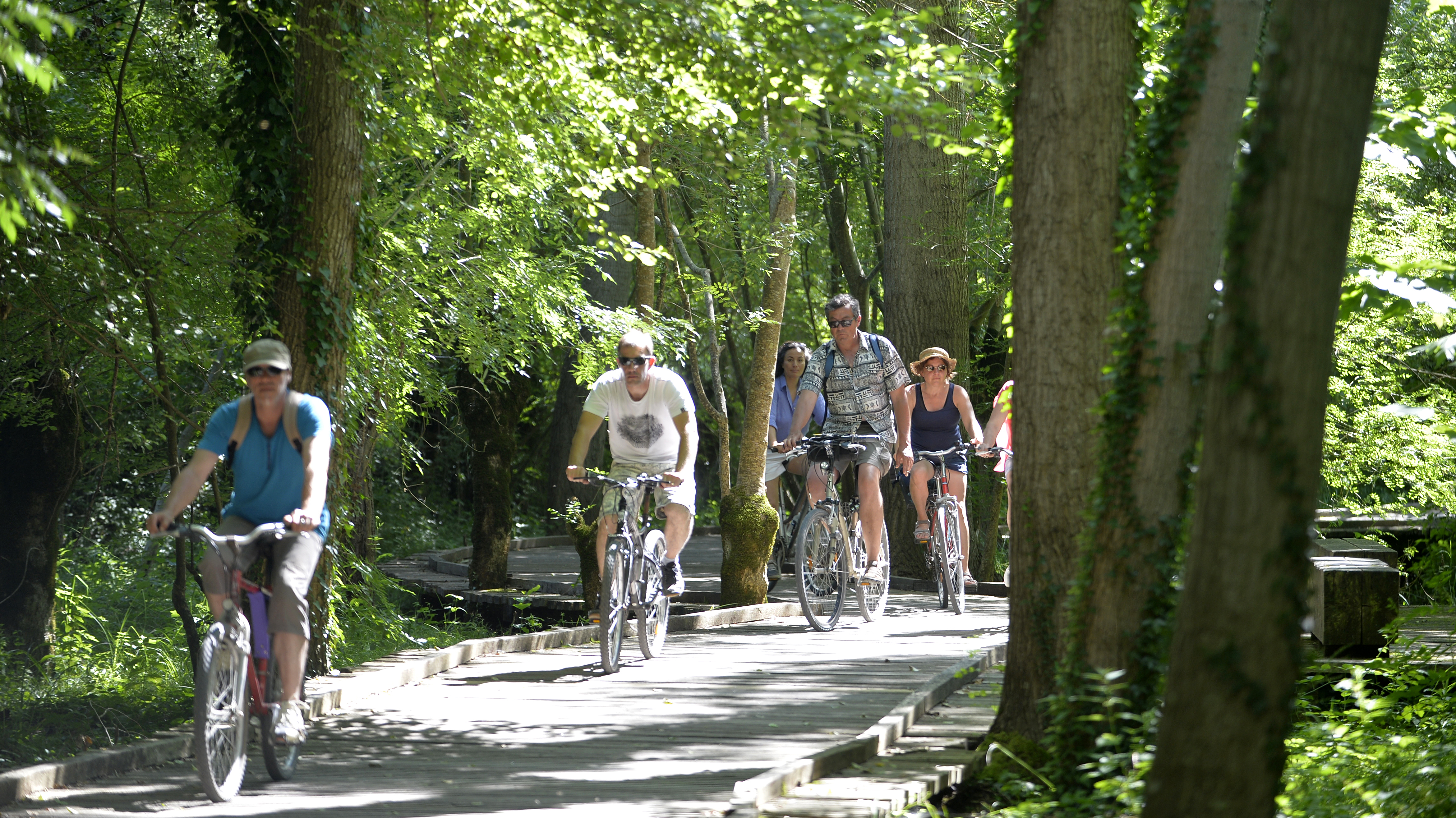 Touristes à vélo passant sur le platelage bois au cœur du Marais poitevin entre Coulon et La Garette.