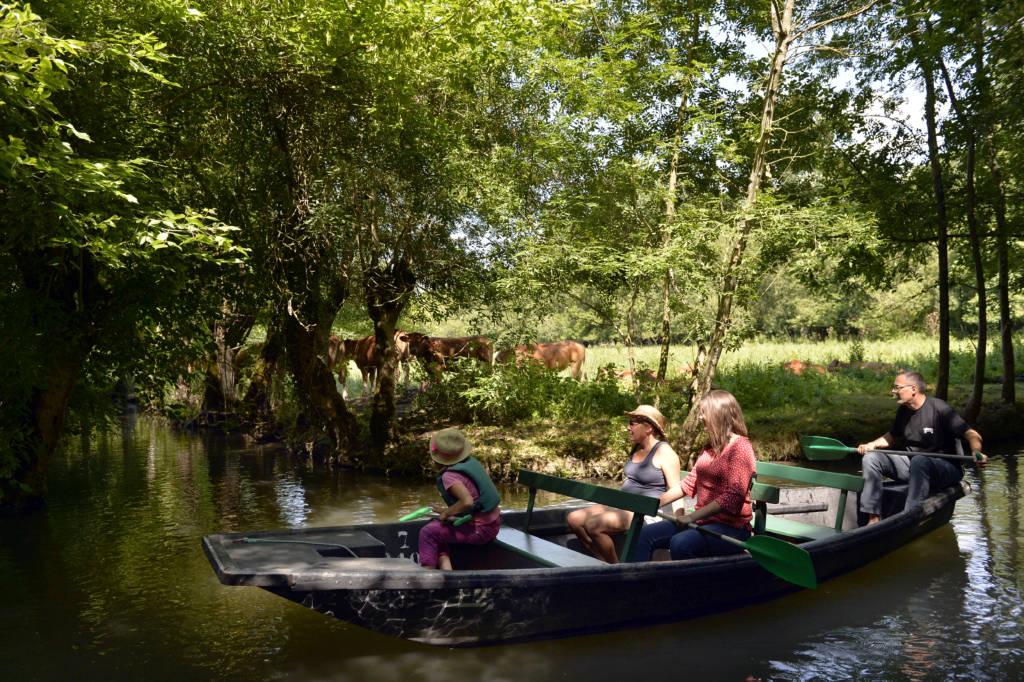 Promenade en barque au coeur du Marais poitevin