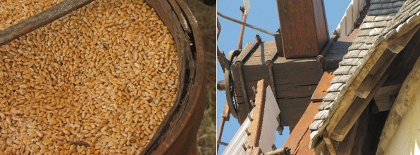 wheat grains and mechanism of the wings of the mill in Marans in the Marais poitevin regional nature park.