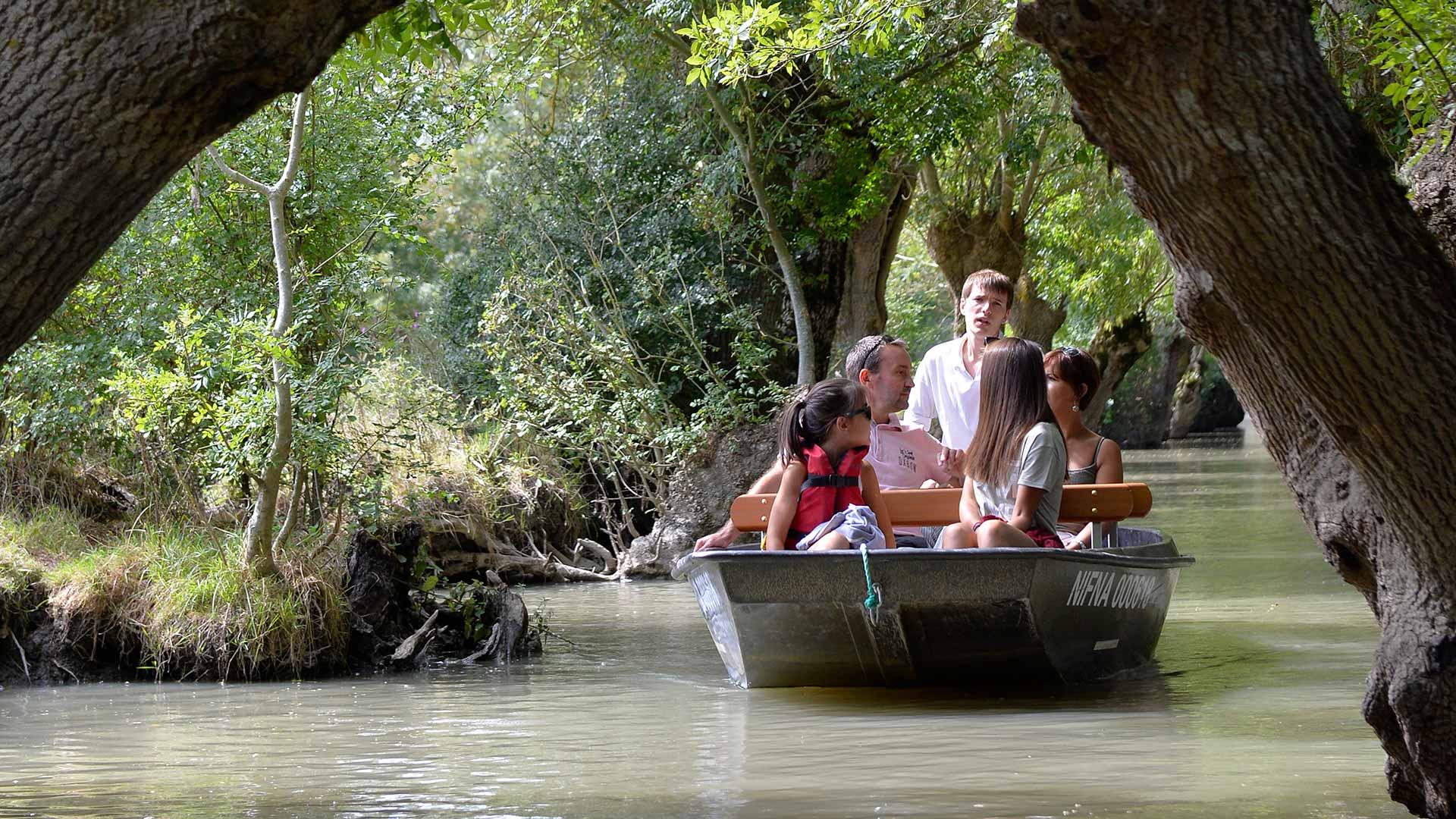 Balade dans le Marais poitevin - En barque dans la Venise Verte