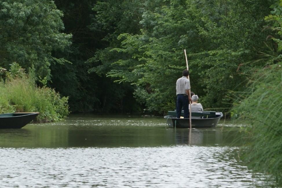 Promenade en barque guidée à l'Embarcadère du parc ornithologique les Oiseaux du Marais poitevin