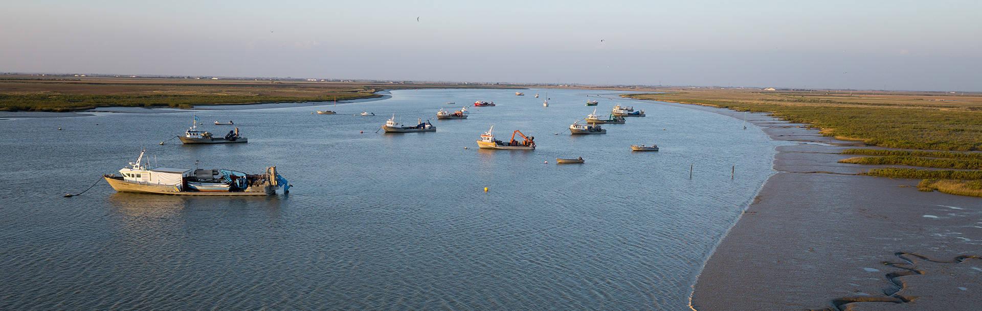 Bateaux de pêche dans la baie de l'Aiguillon, paysage du Marais poitevin