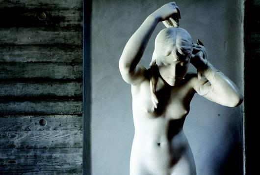 Musée Bernard d'Agesci à Niort dans le Marais poitevin : des collections Beaux-Arts, arts décoratifs, ethnographiques, musiques, Histoire Naturelle…