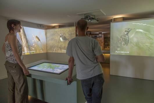 Le Pôle nature du Marais poitevin à Taugon, un site dédié au Marais poitevin, à ses richesses naturelles, à sa protection et à sa valorisation. Jeux-nature