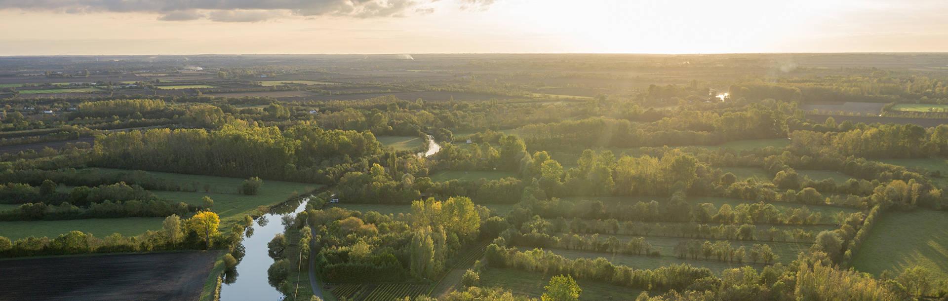 Vue aérienne du quadrillage des frênes du marais mouillé dans le Marais poitevin