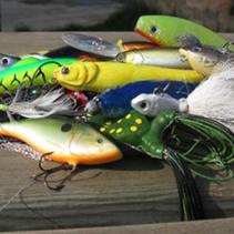 Tout le monde  à la pêche