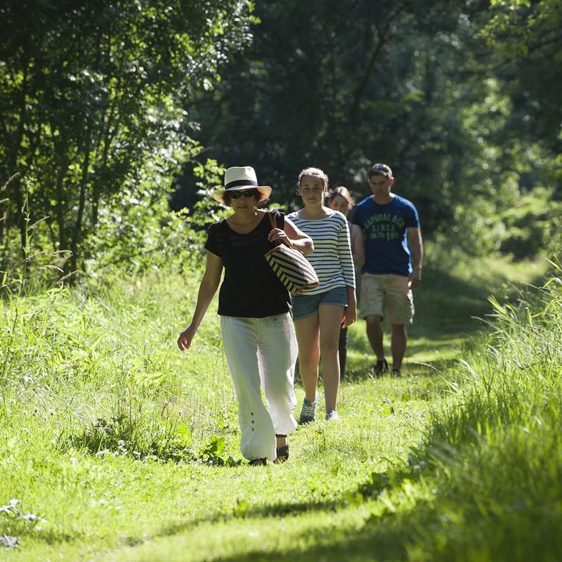 Marcheurs à pied sur les sentiers de randonnée pédestre du Marais poitevin